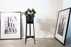The Zenith planter is the ideal addition to any apartment. Dark Horse, Modern Furniture, Planters, Flat, Table, Crafts, Inspiration, Design, Home Decor