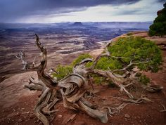 Photograph Canyonlands by Dale Johnson on 500px