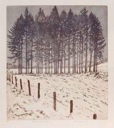 Winter Dusk at Peebles - John Heywood , 2008 Scottish Etching on paper , 56 x 49 cm Landscape Drawings, Landscape Illustration, Landscape Art, Landscape Paintings, Illustration Art, Winter Trees, Winter Art, Art Textile, Illustrations