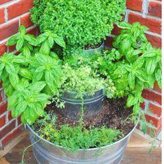 Great idea for a patio herb garden...