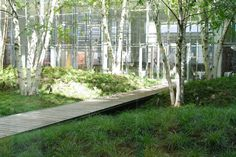 Gallery - The New York Times Building Lobby Garden / HM White Site Architects + Cornelia Oberlander Architects - 3