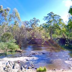 Pound Bend River Walk, Warrandyte, only half an hour away from the CBD — although when you're there, it feels much further. River Walk, School Holidays, Long Distance, Day Trips, Trekking, Melbourne, Places To Visit, Walking, At Least