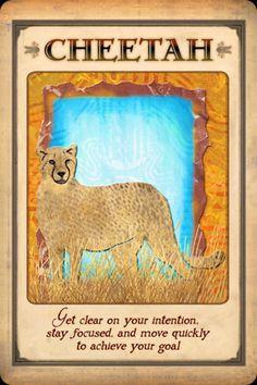 Animal Spirit Guide Cheetah