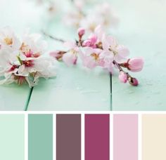 color, inspiration flowers
