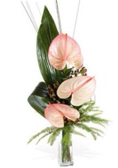1000 images about modern floral design on pinterest ikebana corporate flowers and cymbidium. Black Bedroom Furniture Sets. Home Design Ideas