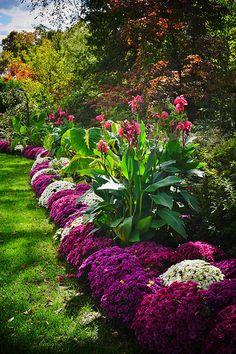 14 stunning spring garden ideas for front yard and backyard landscaping 00009 Beautiful Flowers Garden, Beautiful Gardens, Front Yard Landscaping, Canna Lily Landscaping, Landscaping Ideas, Shade Landscaping, Florida Landscaping, Dream Garden, Big Garden
