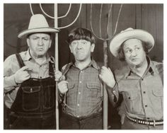 Google Image Result for http://www.moonofalabama.org/images3/the-three-stooges.jpg