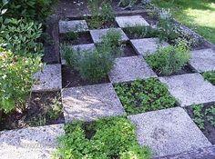 Een tuin met keukenkruiden In elke tuin kunnen kruiden worden toegepast. Zelfs in de kleinste tuin, balkon of stadstuin kan je kruiden voorzien door ze bijvoorbeeld in potten te telen. Wie wat meer