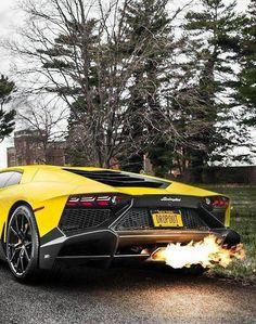 Lamborghini 3