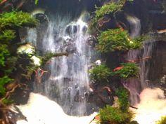 PIRDOT: Contoh Desain Air Terjun Aquscape (waterfall)