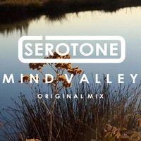 Mind Valley (Original Mix) by S E R O T O N E on SoundCloud