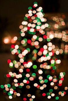 Christmas Lights www.586eventgroup.com