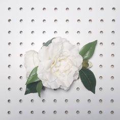 white garden rose hair comb bridal hair piece bridesmaid