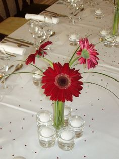 We created these modern floral centrepieces using gerbera flowers and bear grass to fit in with a deep red and cream wedding colour scheme #wedding #weddingflowers #weddingtable #tabledecorations #tablecentrepiece #centrepieceideas #red #burgundy #deepred #ruby #white #gerbera #modern