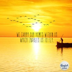 We carry our #homes within us which enables us to #fly.