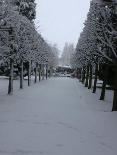 Snow at Lotherton Hall - wonderful