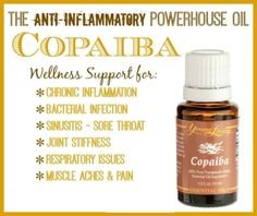 Anytime you use Copaiba with another essential oil, it will have the effect of magnifying the properties of that oil. This can enable you to use less of another more expensive oil