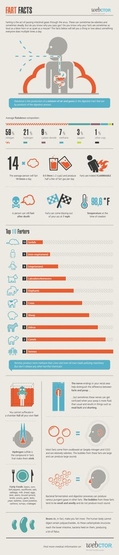 Fart Facts Infographic