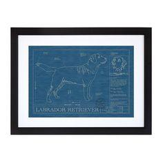 Large Dog Blueprints