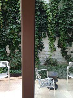 Vista de un rincón del patio descubierto del estudio
