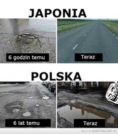 Amusing Life added a new photo. Funny Gags, Wtf Funny, Funny Jokes, Funny Photos, Best Funny Pictures, Donald Trump, Polish Memes, All The Things Meme, Funny People