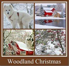 A WOODLAND CHRISTMAS DECORATING PLAN