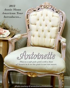 Antoinette.....new Chalk Paint® color that is a MUST HAVE!