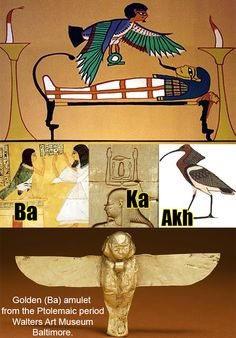3 Elements to the Egyptian concept of the soul:  Ka, Ba, and Akh .___ ((Ka)) is the life force or spiritual double of the person. The royal Ka symbolized a pharaoh's right to rule___((Ba)) is represented as  a human-headed bird that leaves the body when a person dies.___((Akh)) was a concept of the dead that varied over the long history of ancient Egyptian belief, was associated with thought,  but not as an action of the mind; rather, it was intellect as a living entity.