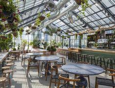 roy-choi-greenhouse-ace-hotel-Downtown-la-1