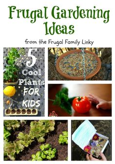 Frugal gardening ideas from the Frugal Family Linky. Including natural pesticides, ideas for plants for kids to grow, home made bird feeder, how gardening helps with fussy eaters and miniature gardens.