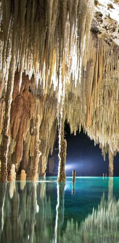 Rio Secreto Caves: site contains pictures and information on several cenotes and lagoons