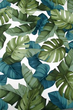 This tropical fabric, straight from Hawaii, features stylized monstera, banana, and taro leaves in shades of green, all on a natural cream background! This is a large print, with the darkest green leaves measuring about 7 inches long. Change up your décor for the summer and make something amazing! The Facts: Fabric is sold by the Yard 1 Yard is 36 x 44/45 inches When you order more than one yard of this fabric, it will be cut in a continuous piece. Check the quantity drop down box to see...