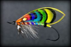 salmon fly (The Drake)