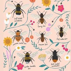 Bees, we love them!😘