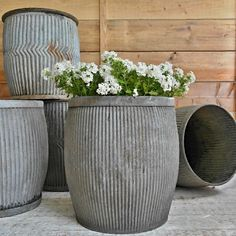 Old galvanized dolly tubs
