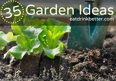 35 Garden Ideas to Get You Growing