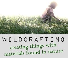 nature crafts—creative projects with materials found in nature