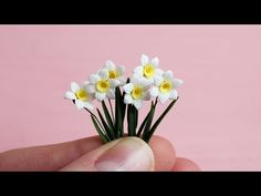 Miniature daffodils are made of polymer clay. Polymer Clay Ornaments, Polymer Clay Christmas, Polymer Clay Canes, Polymer Clay Dolls, Polymer Clay Miniatures, Polymer Clay Necklace, Polymer Clay Flowers, Polymer Clay Pendant, Polymer Clay Projects