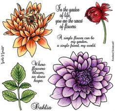 Dahlia stamp set by Sparkle 'n Sprinkle - $18.49