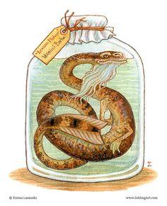 monsters in a bottle Magical Creatures, Fantasy Creatures, Illustrations, Illustration Art, Image 3d, Monster Art, Dragon Art, Dark Souls, Creature Design