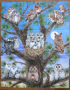 """""""Owl Tree"""" whimsical watercolour by Tracy Lizotte. See all of her beautiful owl prints available here --> Owl Tree, Bird Tree, Owl Bird, Pet Birds, Owl Artwork, Owl Illustration, Paper Owls, Owl Family, Owl Pictures"""
