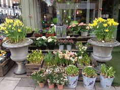 Flower Shop in London England