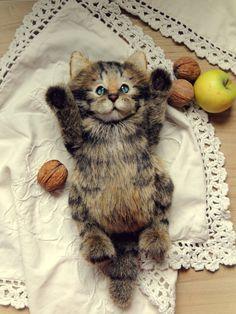 Teddy cat. Artist teddy bears. Pet portraits. by katerinamakogon