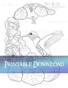 "Hummingbirds and Nasturtiums Printable Coloring Page from the book ""Many Meetings: A Nature's Curiosities Coloring Collection"" by Lisa Marie Ford via Digital Download available via the DownontheFarmStudio Shop."