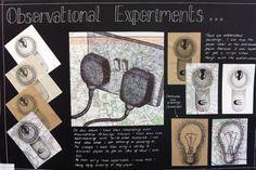 Beaumont School: GCSE, Observational experiments