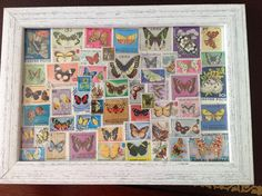 Stamps with butterfly theme framed for M's room - done. To repeat with protea stamps.