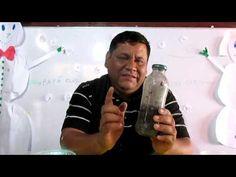 Insecticida organico de ceniza - YouTube