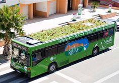"""Las azoteas verdes se """"suben"""" al techo del autobús. http://www.obrasweb.mx/vivienda/2012/11/13/llevan-el-esquema-azoteas-verdes-a-los-autobuses      Cubiertas verdes Sika: http://mex.sika.com/es/inicio/noticias/noticias-techo-verde-infonavit.html"""