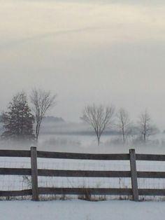 Frosty fog in Hadley, MA