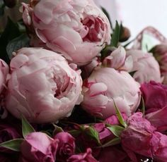 More peonies from the iconic Cornelia Guest